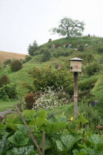 The view across the Shire