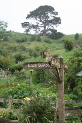 Sign posts in the Shire
