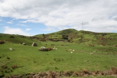 Scenic railway views over fields