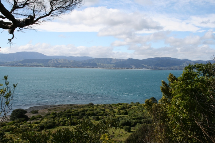Postcards from Wellington …. Part 4