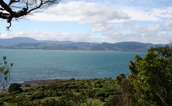 Postcards from Wellington …. Part4