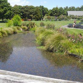 botanic gardens lake 2