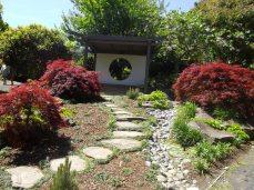 botanic gardens Chinese garden